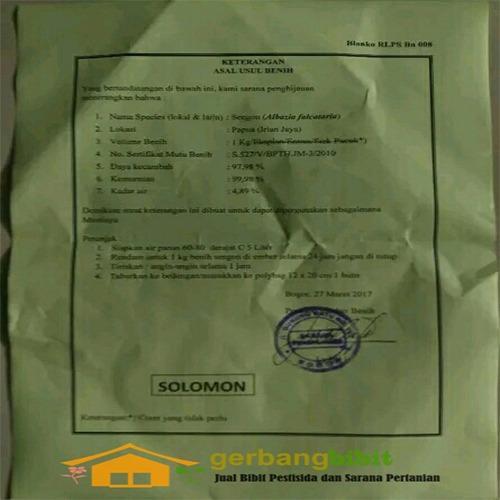 Biji Bibit Benih Sengon Solomon Super Unggul 1kg