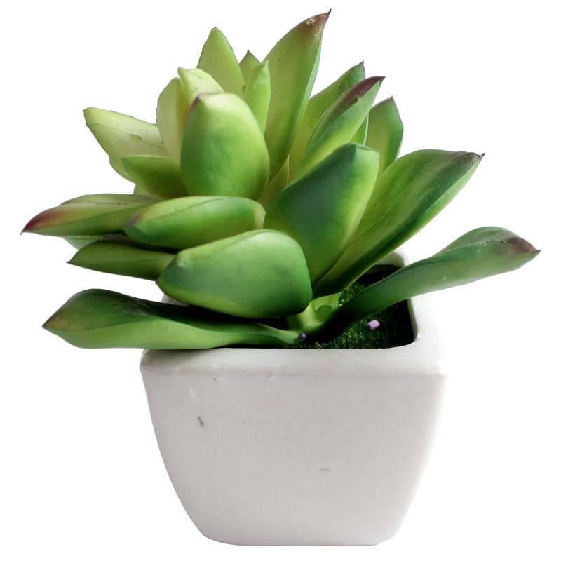JYSK - Tanaman Palsu ARTIFICIAL PLANT 17D047 D8XH13CMIDR39900. Rp 39.900