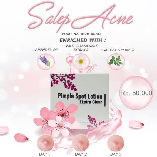 MS Glow Acne Cream / Pimple spot lotion / Salep Acne Solusi Jerawat Bandel - 1 Pcs