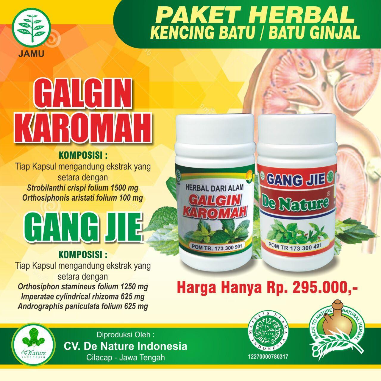 Obat Luruh Batu Ginjal Dengan Cepat Herbal De Nature