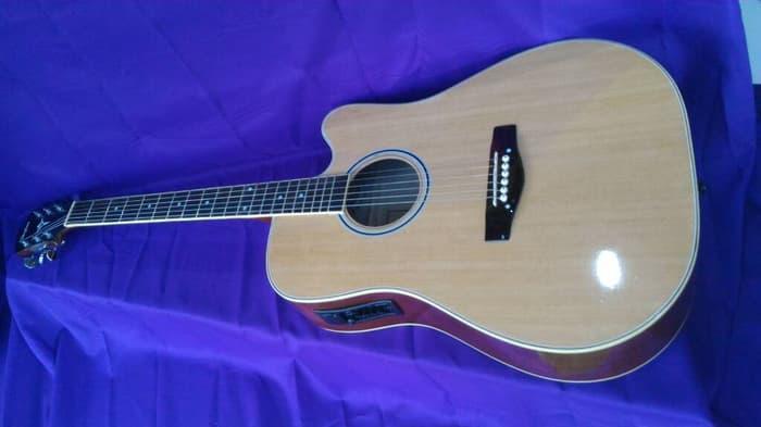 gitar akustik elektrik sitepu taylor