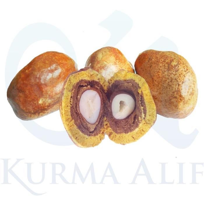 Buah Zuriat / Doum Satuan 1 Pcs Untuk Promil By Kurma Alif.
