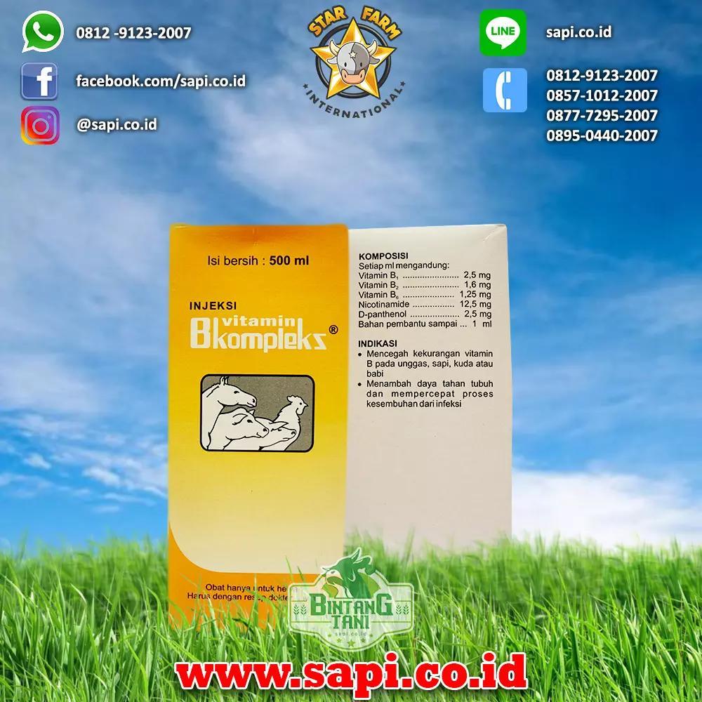 Enervita B Complex Plus 30s Vitamin Meningkatkan Daya Tahan Tubuh Nutrimax 30 Tablet Mencegah Flu Source