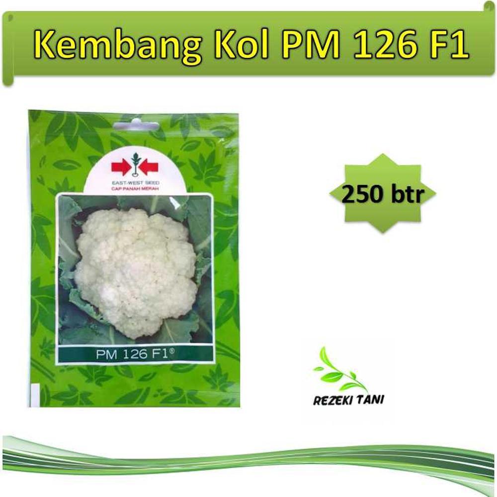 Benih Kembang Bunga Kol PM 126 250 Butir Panah Merah