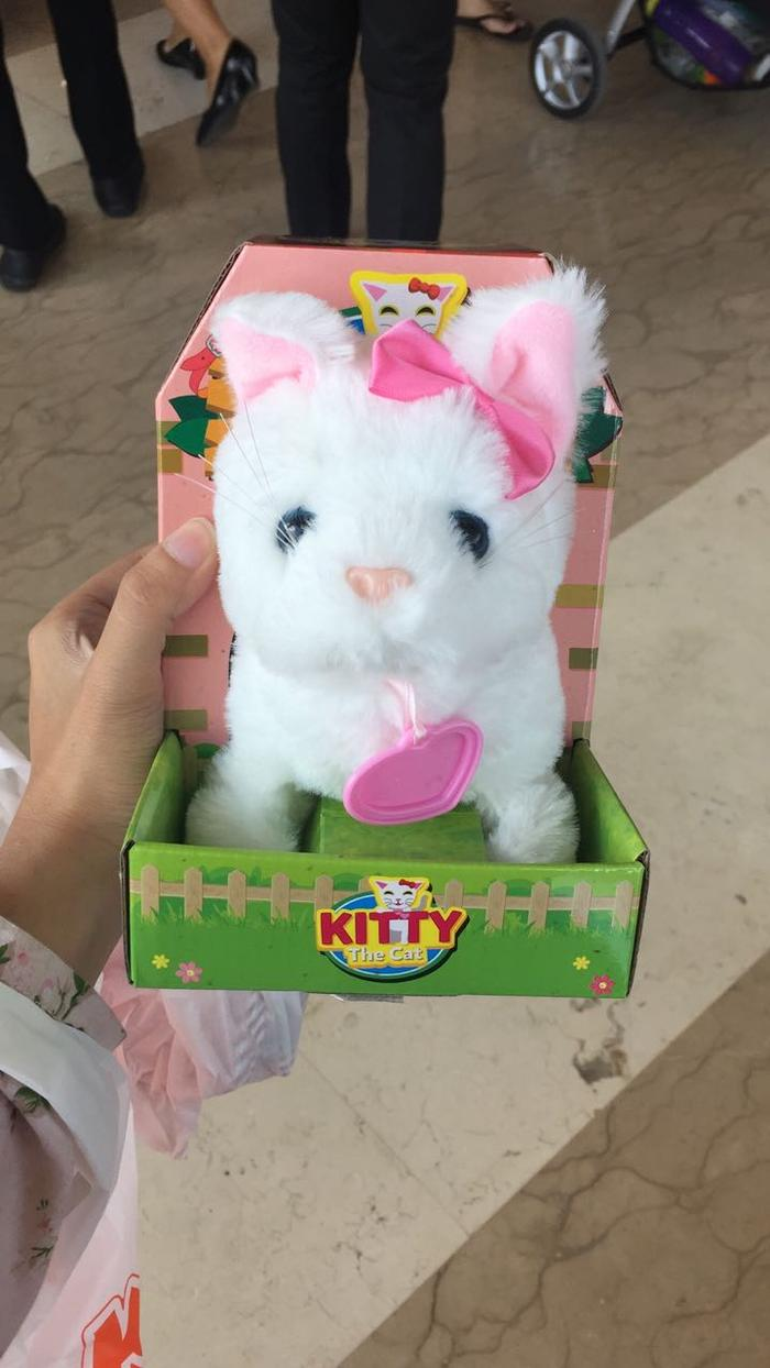 Buy Sell Cheapest Terlaris Boneka Kucing Best Quality Product Exclusive Free Sisir Toyskingdom Wlwhtl