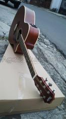 Gitar Taylor Custom Brown Aw1