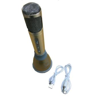 Harga VDR Portable Microphone +Speaker Bluetooth V-3900BT Ebony - Mic Portable
