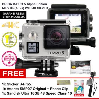 BRICA B Pro5 Alpha Edition 4K Mark IIs AE2s SILVER Sticker