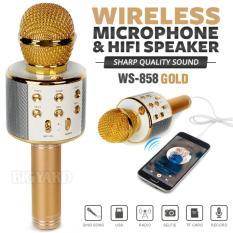 MIC WSTER WS 858 Wireless Bluetooth Karaoke - Mic Smule WSTER WS 858