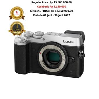 Panasonic Lumix Dmc-Gx8 Body Only