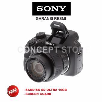 SONY CYBER SHOT DSC-H300 . H 300