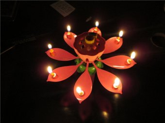 Amazing Musical Lotus Happy Birthday Gift Candle Musical Candle new - intl