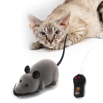 Beli Online Hanyu Hewan Peliharaan Anak Kucing Lucu Bermain Tongkat Source Baru Tikus .