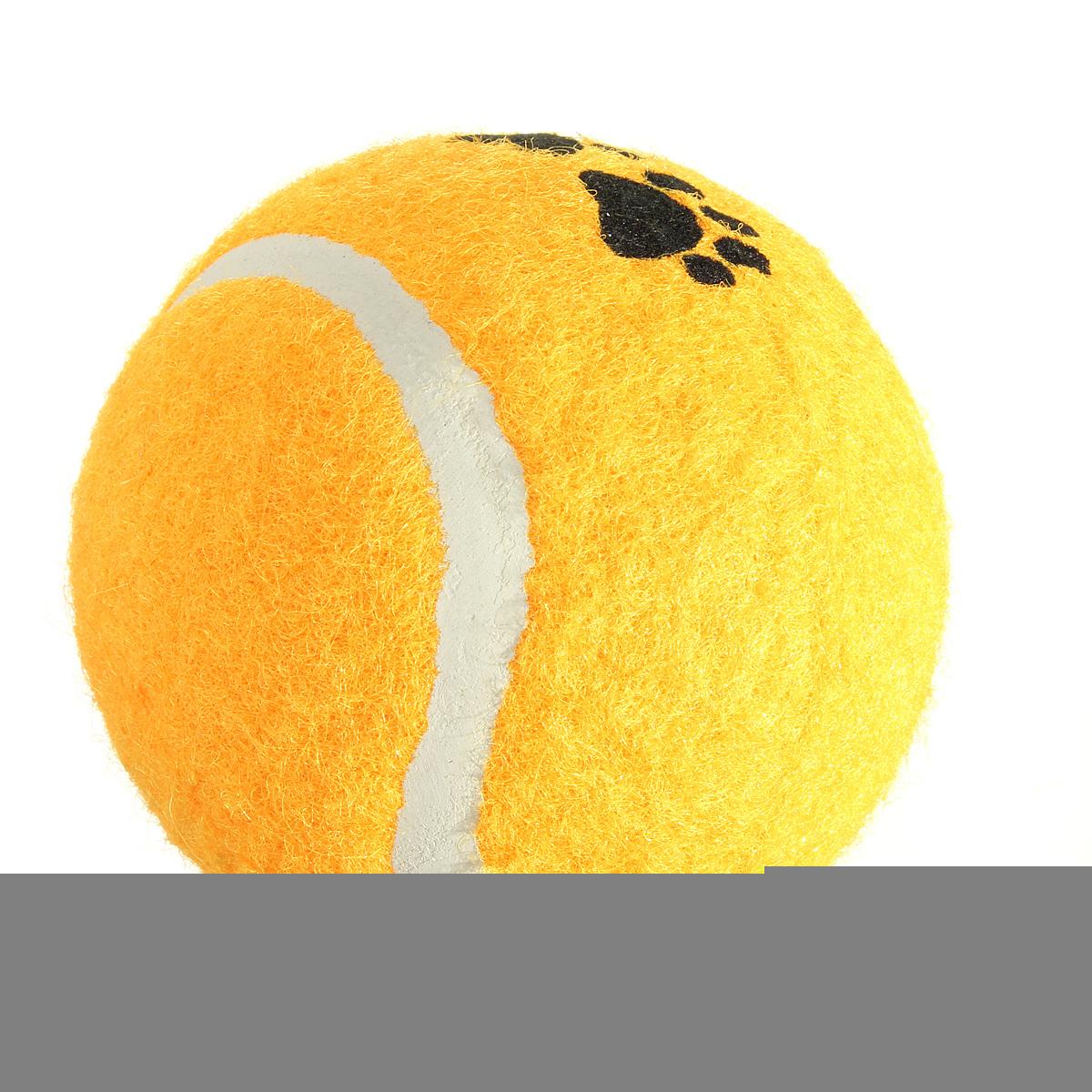 Hewan Peliharaan Kucing Anjing Pelatihan Anjing Kecil Lucu Bermain Bola Tenis Melempar Mainan .