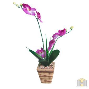 Anggrek Botolan Cattleya Hybrid. Source · Anggrek artificial ungu