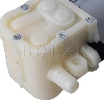 Udara air pompa diafragma Perak International 5 .