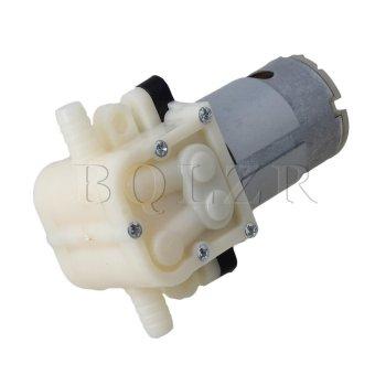 Udara air pompa diafragma Perak International 4