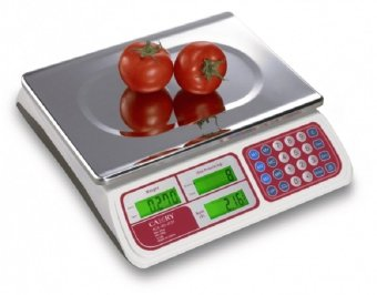Harga Camry Electronic Price Computing Scale 30 kg