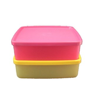 Harga Tupperware Large Square Away