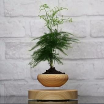 magnetic levitation air bonsai Suspension flower pot potted plantlevitate tubs - intl