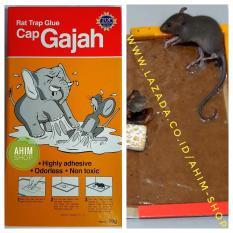 Papan Lem Perangkap, Penjebak, Pembasmi Hama Tikus Cap Gajah - Rat Trap Glue 70 gram
