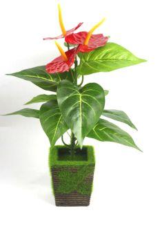 Tanaman pot dalam ruangan dekorasi tanaman pot kecil simulasi LZNC