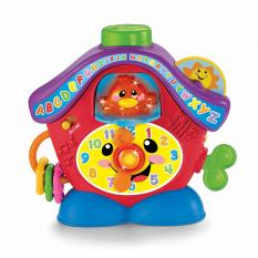 Fisher-Price® Infant Peek-a-Boo Cuckoo