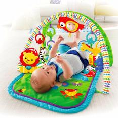 Fisher-Price® Newborn 3-In-1 Musical Gym