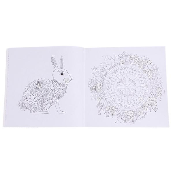 Hang Qiao Secret Garden Enchanted Forest Coloring Book Black AndWhite