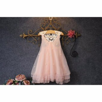 Harga Fashion kids clothes Flower Girl Spring Summer Princess Dress Kid Baby Formal Party Wedding Lace Tulle Tutu Dresses (2-3T) - intl