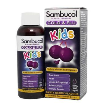 Harga Sambucol Cold & Flu For Kids 120ml Syrup - Rasa Berry