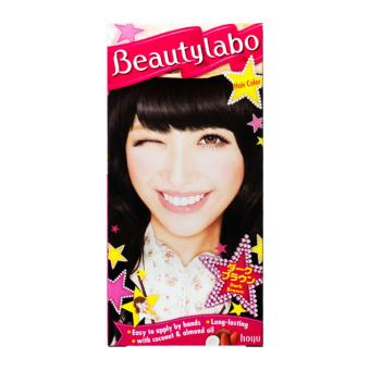 Beautylabo Hair Color Dark Brown N4