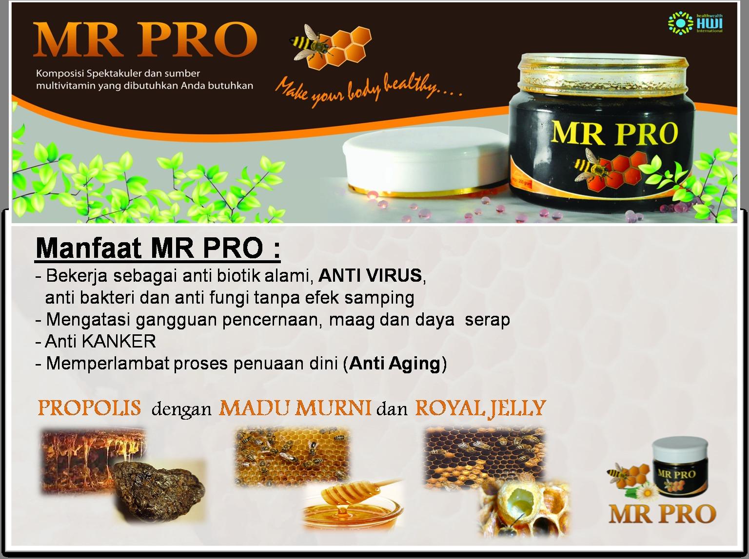 Harga Terendah Mr Pro Suplemen Penggemuk Alami Penambah Berat Hwi Nafsu Makan Badan