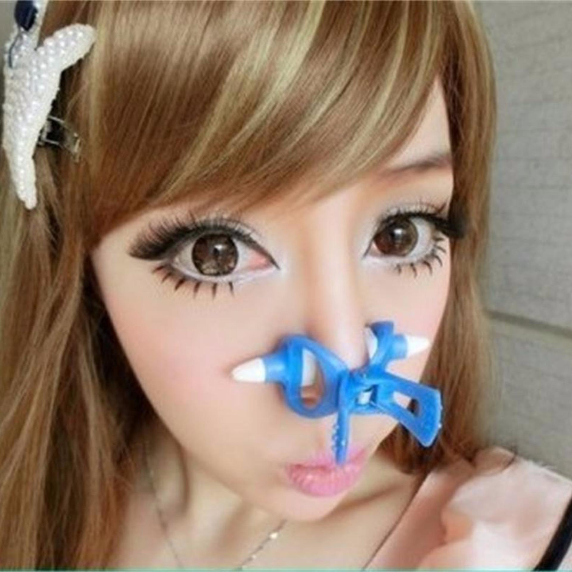Price Checker Nose Up Clipper Pemancung Hidung Import Dengan Noseup Sponge