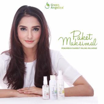 Harga Obat Penumbuh Rambut Ampuh Menumbuhkan Rambut Rontok Hingga Botak Paket Maximal Green Angelica Murah