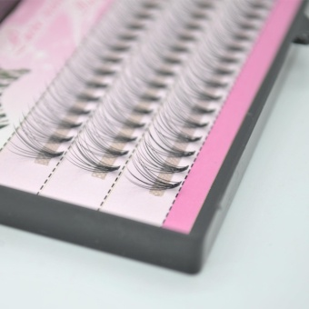 Sunshop Creating Charm Eyes A Box of Natural Long Fake False Eyelashes (6mm) - intl - 2