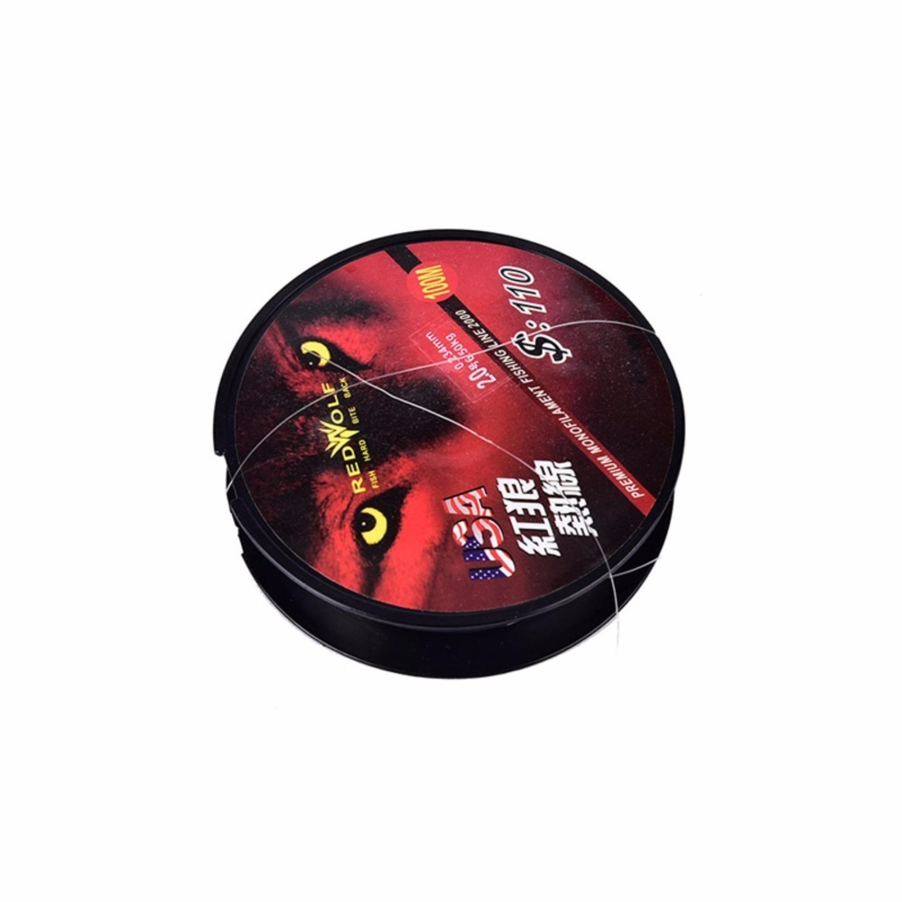 Fishing Line 100M Fluorocarbon Leader Tough Monofilament Trace Size:4.0# - intl .
