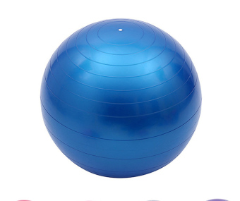 Harga Sports Equipments Exercise Ball PVC Blue Yoga Ball - intl