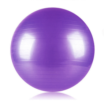 Harga PAlight 65cm Yoga Fitness Ball Gym Fitness Ball (Purple)