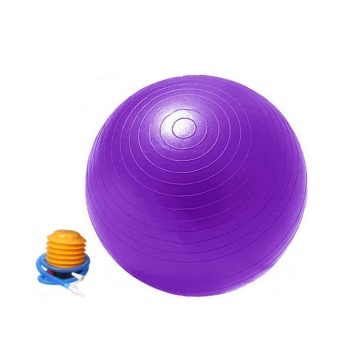 Harga HS Gym Ball + Pump - Purple