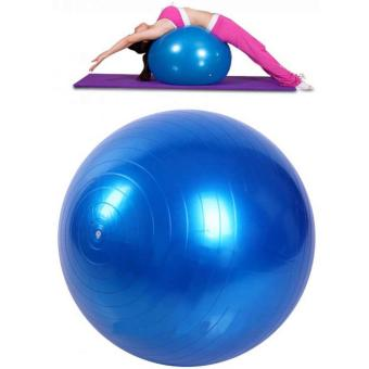 Harga Bola Yoga Pilates Fitness Gym Ball 65 CM - Blue