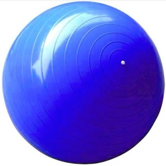 Harga Gym Ball Size 65cm Bola Fitness Yoga Ball Bonus Pompa Angin - Biru