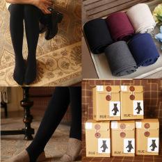 Kapas Musim Semi dan Gugur baru Winnie bottoming celana langkah kaki kaus kaki kaus kaki (