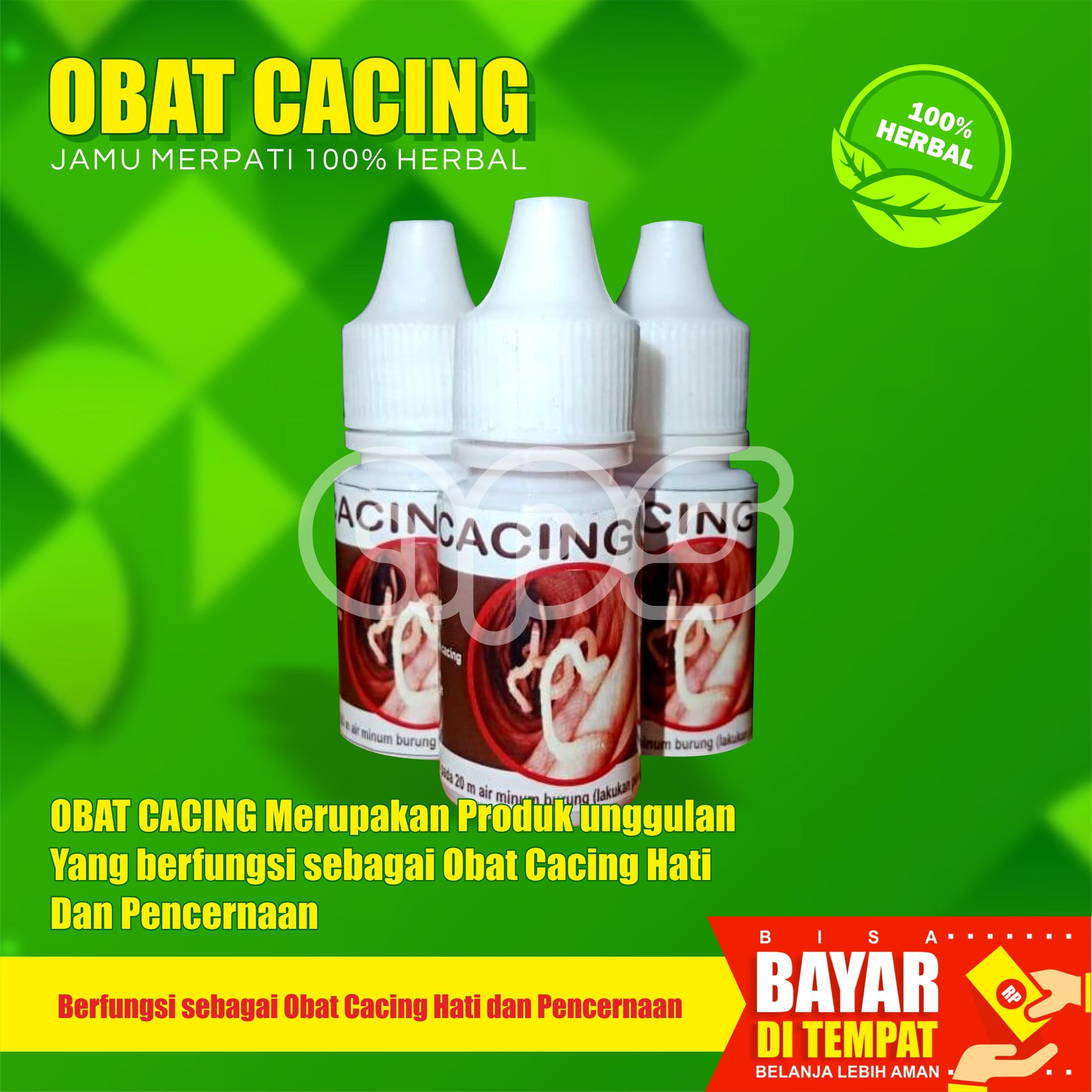 Obat Cacing Burung Merpati Ampuh Aman Obat Pembasmi Cacing Burung Obat Cacing Khusus Merpati Lazada Indonesia