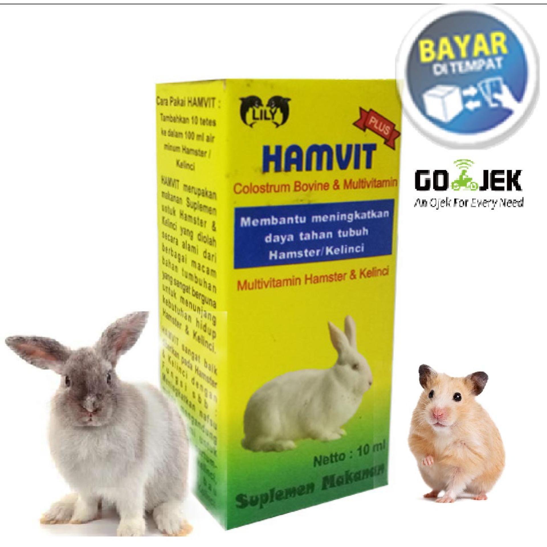 Vitamin Hewan Hamster Sugar Glider Dan Kelinci Hamvit Ht Lazada