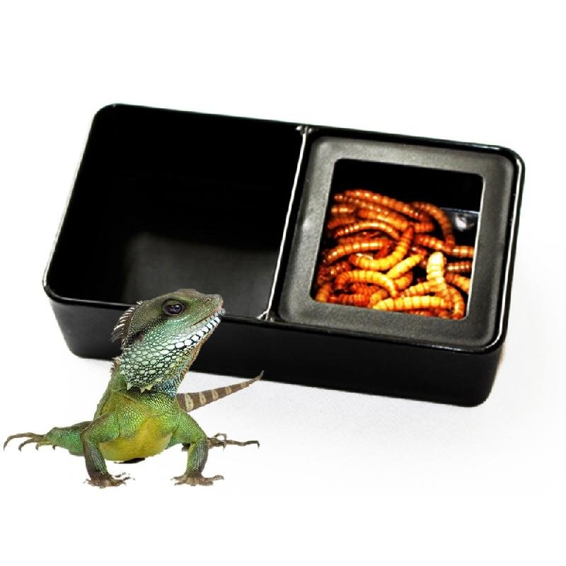Cocotina Transparent Vented Box Insect Reptile Transport Breeding Feeding - intl