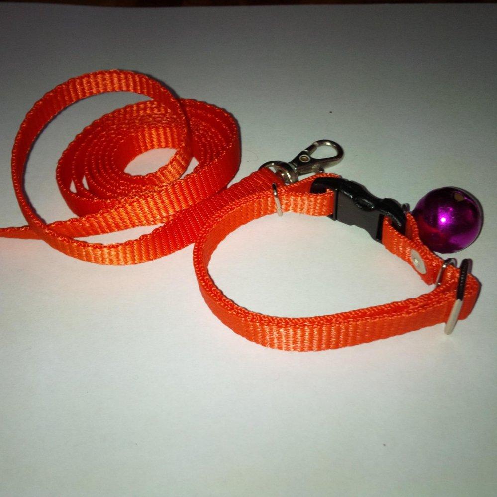 ... Collar/Kalung uk S + Leash Orange untuk Kucing, Kelinci, Musang,Puppy ...
