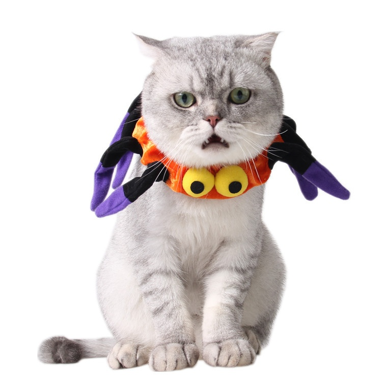Funny Dog Cat Pet halloween spider costume outfits Cute dogElizabeth protective collar Dog Neck - intl