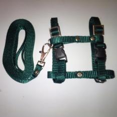 Harness H uk S + Leash Hijau Tua untuk Kucing, Kelinci, Musang, Puppy Small breed
