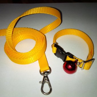Harga Collar/Kalung uk S + Leash Kuning Tua untuk Kucing, Kelinci, Musang, Puppy Small breed